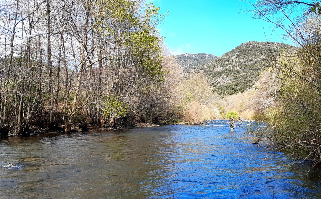 L'orb, rivière idéale pour découvrir la pêche à la mouche