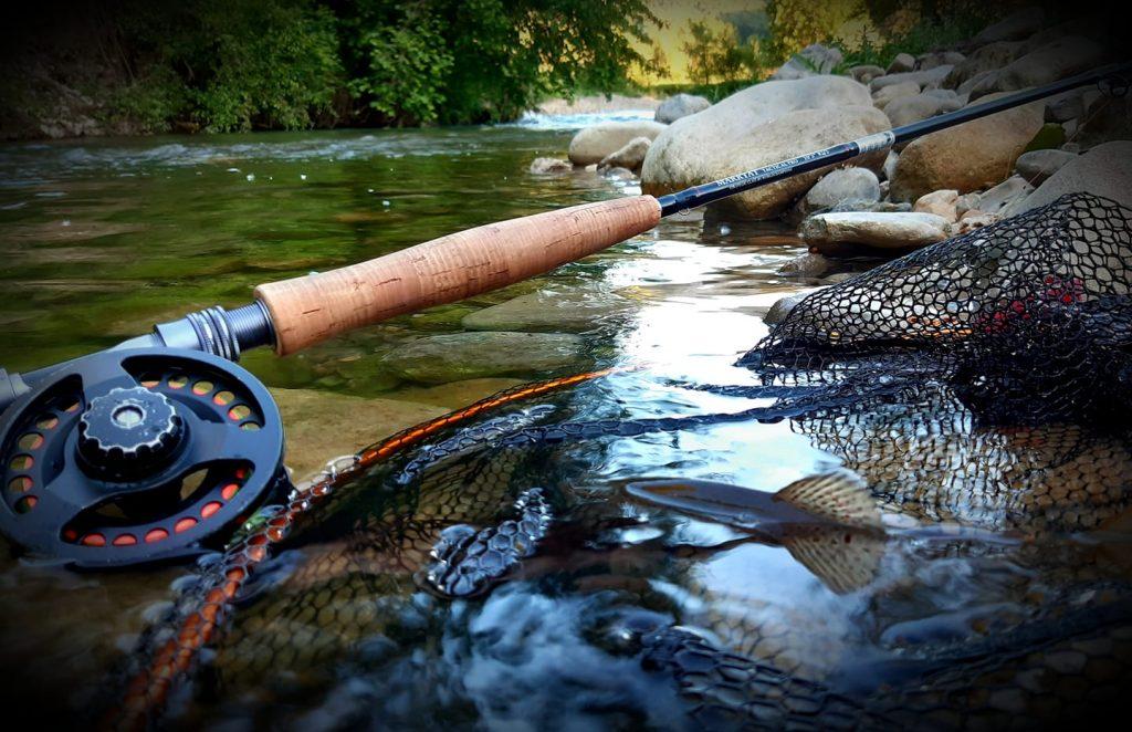 une truite sur la rivière de la sorgue d'aveyron